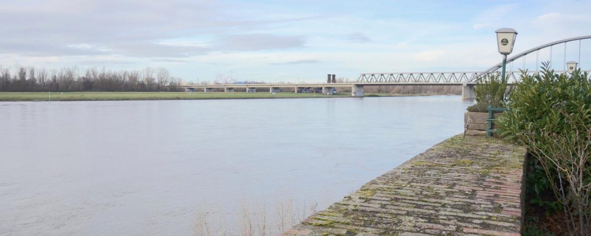Sicht über den Rhein 5