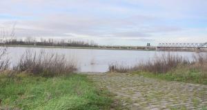 Sicht Über Den Rhein 3
